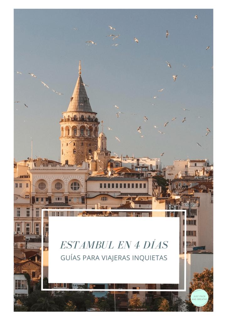 Guía que ver en Estambul pdf